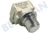 165281, 00165281 Thermostat-fix NTC -von Element-