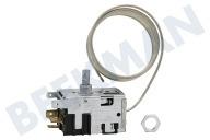 Retro Kühlschrank Pelgrim : Pelgrim kühlschrank thermostat beekman ersatzteile