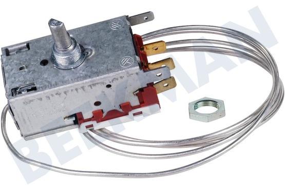 Aeg Kühlschrank Thermostat : Aeg electrolux tricity bendix zanussi kühlschrank gefrierschrank